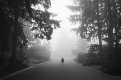 in Sammamish (sparth) Tags: sammamish fog foggy brouillard blackandwhite blackwhite bw noirblanc noiretblanc nb 2017 wa washingtonstate leica tl leicatl