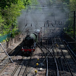 Flying Scotsman in Princes St Gardens