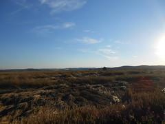 DSCN2303 (R58c) Tags: cechy bohemia czech krajina countryside pole fields posázaví harvest sklizen