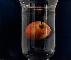 Zitrone zu schwer und für den Apfel war es zu dunkel (Günter Hentschel) Tags: üben zitrone apfel obst deutschland germany germania alemania allemagne europa nrw test dieanderenbilder verrücktebilder verrückt training nikon nikond5500 d5500 flickr hentschel indoor