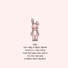 토꺵이소개 (MiNDi_world) Tags: 인형 토끼 토깽이 키덜트 소개 일상 캐릭터 그림 일러스트 반가워