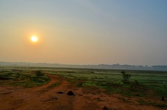 DSC_3104 (Smevin Paul) Tags: hesaraghatta lake may 2017 smevin paul smevinpaul smevinsphotography smevinpaulphotography smevinsphotos smevinsphotographs smevinpictures smevinspictures thrisookaran passion photography