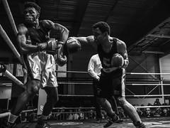 B versus B (Drummerdelight) Tags: boxing sport black muscles blackwhite action