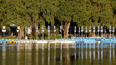 el embarcadero - #InspiraciónBdF7 (maotaola) Tags: inspiraciónbdf7 embarcadero botes regladelostercios reflejos reflejosenelagua cdmx lagodechapultepec harbor perfectcomposition wetreflections