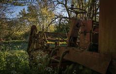 DSC_4276 (Foto-Runner) Tags: urvbex lost decay abandonné épaves car voitures ferme