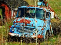 Old Blue Truck (e r j k . a m e r j k a) Tags: ohio columbiana unity abandoned truck rusted crusty roadside rural oh14 erjkprunczyk explore