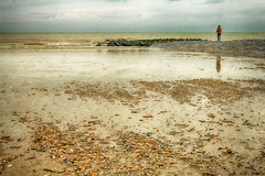 Beach (Jan 1147) Tags: beach strand zand sand schelpen shells sea zee wolken clouds golfbreker natuur nature bredene belgium