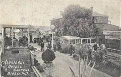 Aldridge's Hotel and Gardens, Broken Hill, N.S.W. - very early 1900s (Aussie~mobs) Tags: ealdridge hotel gardens teagardens brokenhill newsouthwales vintage australia
