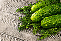 Fresh green cucumbers with dill on wooden table (mikhafff1984) Tags: table pickle plant agriculture background basket closeup crop cucumber food fresh freshness garden green group harvest harvesting healthy ingredient kitchen large leaf many market nature nobody nutrient organic raw refreshment ripe vegetable vegetarian vitamin wooden