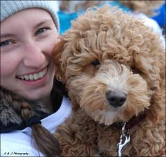 """ Say Cheese ! "" (John Neziol) Tags: kjphotography interestingdogposes portrait poodle pet animal nikon nikoncamera nikondslr outdoor brantford dog dognose closeup curlyhaireddog cute"