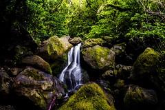 Nice waterfall on the Lulumahu trail, Oahu, Hawaii 😎 (mariusskymoen) Tags: waterfall hawaii oahu nature jungle trekking travel longexposure nikon nikond5300 naturephotography water rainforest