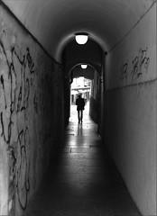 SoulBlack (oiZox) Tags: soul black arquitecture walking europe town trento travelling urban urbano introspectus italy italia orlandoimperatore ombreeluci people paseo nikon negro nero light life lux licht lines luz love libre human gente fotourbana d750 depthoffield dof design streetphotagraphy street shadow silhouette zox zoximage zwart exterior city calle callejera citta foto blackwhite blanconegro bw blanco bianco bianconero monocromatico mono mensen monocheome