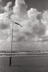 (tmkbnn) Tags: prakticabx20 slr singlelensreflex smallformat 35mm 135 film filmphotography agfaphotoapx100 denmark beach clouds windsock tomek bw blackandwhite bwfp