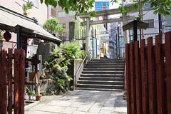 untitled (t-miki) Tags: kanda tokyo shrine 神田 東京 神社