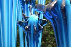 Glasshouse Fiori (KaDeWeGirl) Tags: newyorkcity bronx nybg botanicalgarden glass sculpture glasshouse fiori chihuly blue explore