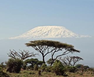 Iconic Amboseli