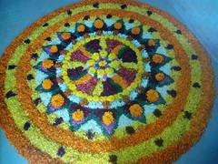 IMG_20160914_085809 (bhagwathi hariharan) Tags: onam pookalam flower rangoli kolam carpet floral nalasopara nallasopara virar aathapookalam tiruonam