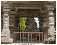 DSC_2186.1 (vatsaraj) Tags: halebidu halebeedu nandi bull ancient temple architecture stonework stonetemple stonearchitecture hoysala hoyasala nikon d300 vatsaraj cvatsaraj