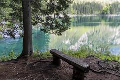 relax (conteluigi66) Tags: radice paesaggio landscape d500 nikon acqua water riflesso riflessi reflection luigiconte root panchina panca bench rest 1680 vividstriking