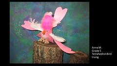 irving-tetrahedron-bird-anna