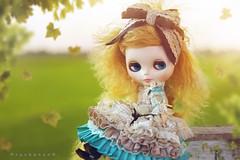 Sunset   Blythe Doll  