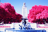 Main Building and Littlefield Fountain (infobong) Tags: infrared colorinfrared infraredfilm colorinfraredfilm austin utexas