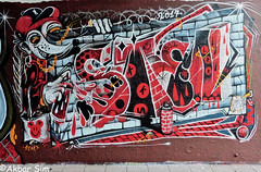 Den Haag Graffiti  STEEN (Akbar Sim) Tags: steen binckhorst denhaag thehague agga holland nederland netherlands graffiti akbarsim akbarsimonse