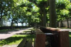 todo llega para el que sabe esperar. (Sara AD.) Tags: green verde view sinfiltros foto photo 1100d canon1100d canon europe europa spain españa paísvasco alava laguardia