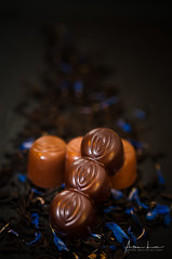 Chocolate, My Sweet Weakness 3 (Alec Lux) Tags: cacao candy chocolate cocoa delicious dessert food foodphotography pralines small sweet sweetfood tasty tastyfood waregem vlaanderen belgium be