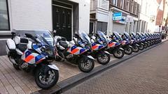 Bijna Koningsdag in Tilburg (appie462@gmail.com) Tags: politie tilburg holland noordbrabant appiedeijcksphotography nederland koningsdag