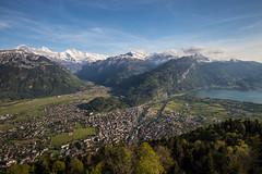 interlaken (tinfrey) Tags: 2017 canonef1635mmf40lisusm canoneos6d berneroberland cantonofberne harderkulm interlaken lake may mountains switzerland viewpoint