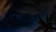 When the night has come, and the land is dark... (Alexandre DAGAN) Tags: bronwsbay northshore auckland newzealand night nuit ciel sky étoiles stars voielactée milkyway nouvellezélande panasoniclx100 panasonic lx100 dmclx100 couleur color voyage travel