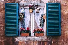 racconti dalla finestra (cherryspicks (on/off)) Tags: window tuscany italy siena vintage flowers pots