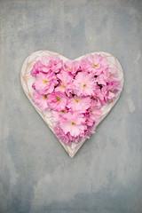 Cherry Blossom Heart (photoart33) Tags: stilllife blossom cherryblossom pink heart love romantic pretty flower