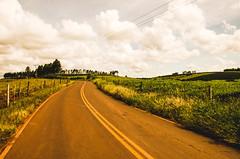 Country Road - Brazil (rodengelet) Tags: rodrigovasconcellossilvarvs brasilemimagens brasil brazil rodovia route estrada interior campo d7000 lenssigma1750mm28 fotografosbrasileiros fotografemelhor flickr flickrglobal