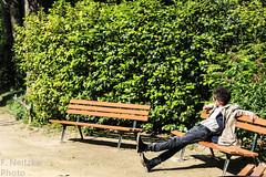 25 Jardin des Plantes de Nantes (faneitzke) Tags: portfolio canon canont5eos1200d canont5 nantes naoned bretagne bretanha britanny paysdelaloire loireatlantique france frança francia travelling travel traveling trip traveler traveller exchangestudent ryep rye rotaryyouthexchange spring primavera printemps intercâmbio studentexchangeprogram rotary jardindeplantes jardindeplantesdenantes botanicalgarden jardimbotânico jardinbotanique nature natureza flora jardin jardim garden trees tree árvore árvores flower flowers flor flores fleur gente people pessoas pessoa vegetação vegetation sunny green verde vert contrast constraste