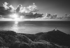 Feel the heat 暖意 (Mr F Ding) Tags: monochorome blackwhite nikon nikonnz newzealand nz ngc natgeo capereinga lighthouse vsco landscape seascape longexposure clouds sunny sunset