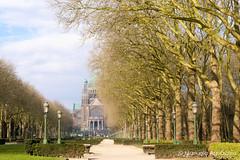 #basílicadelsagradocorazón #basílicadekoekelberg #2016 #bruselas #bruxelles #brussel #bélgica #belgium #ciudad #city #viajar #travel #viaje #trip #paisaje #landscape #árboles #trees #photography #photographer #picoftheday #sonystas #sonyimages #sonyalpha (Manuela Aguadero) Tags: landscape trip city sonystas 2016 brussel trees sonya350 sonyimages ciudad árboles basílicadekoekelberg bélgica viajar bruselas picoftheday belgium photography bruxelles sonyalpha sonyalpha350 paisaje basílicadelsagradocorazón photographer alpha350 viaje travel