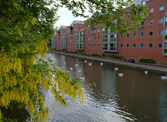 River Soar at Leicester (Tony Worrall) Tags: leicester local city unitary authority area eastmidlands england county town leicestershire uk update place location visit attraction open stream tour country architecture building built build river riverside riversoar soar wet water