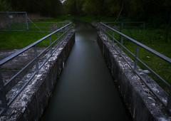 IMG_2413 (DB - Fotografie) Tags: water darkness wasser green nature woods thinking backtonature photography fotografie thinkoutloud