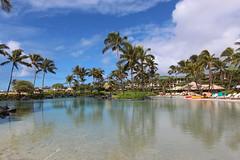 Kauai Paradise (russ david) Tags: kauai pacific ocean september 2016 hi hawaii ハワイ 風景 grand hyatt paradise