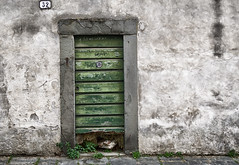 Another door (frankdorgathen) Tags: leaf floral flora pavement 32 number streetphotography street italien italy toskana tuscany lucca green outdoor city urban town architecture building closed wood stone door