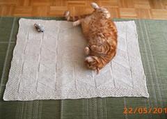 Kitty Blanky (snowsheep1) Tags: handspun katzen decke
