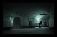 Insanity (Fotogravirus) Tags: fortvuren vuren fort insanity conceptualart art dark creepy neglected