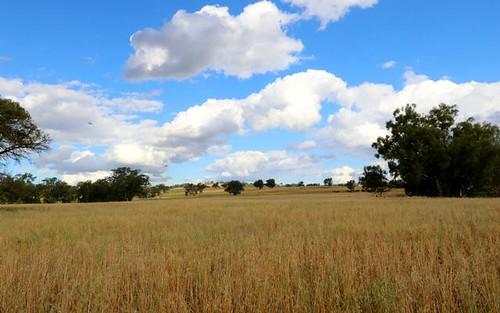* Old Cootamundra Rd, Cootamundra NSW