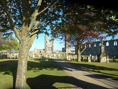 St Andrews cathedral cemetery, 2017 May 07 (Dunnock_D) Tags: uk unitedkingdom britain scotland fife standrews blue sky cathedral tree green grass path cemetery graveyard