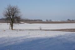 Krzczonowski Park Krajobrazowy (arkbol) Tags: lubelskie lubelszczyzna krzczonów landscape park krzczonowski krajobrazowy