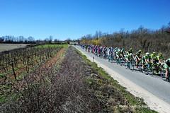 20170311_006 (Continental Team AMPLATZ - BMC) Tags: mariostiehl stiehlphotographyberlin bestphotographer stiehlpics cycling 14istrianspringtrophy2017 stage2