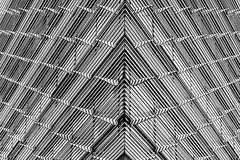 Sem espelho / No mirrors (Nuno's Photo Warehouse) Tags: 2017 nunofrocha portugal porto line linha white arquitetura architecture windows janelas pb bw blacknwhite bnw pretobranco abstract abstrato