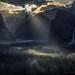 Yosemite Light Rays on Valley Fog